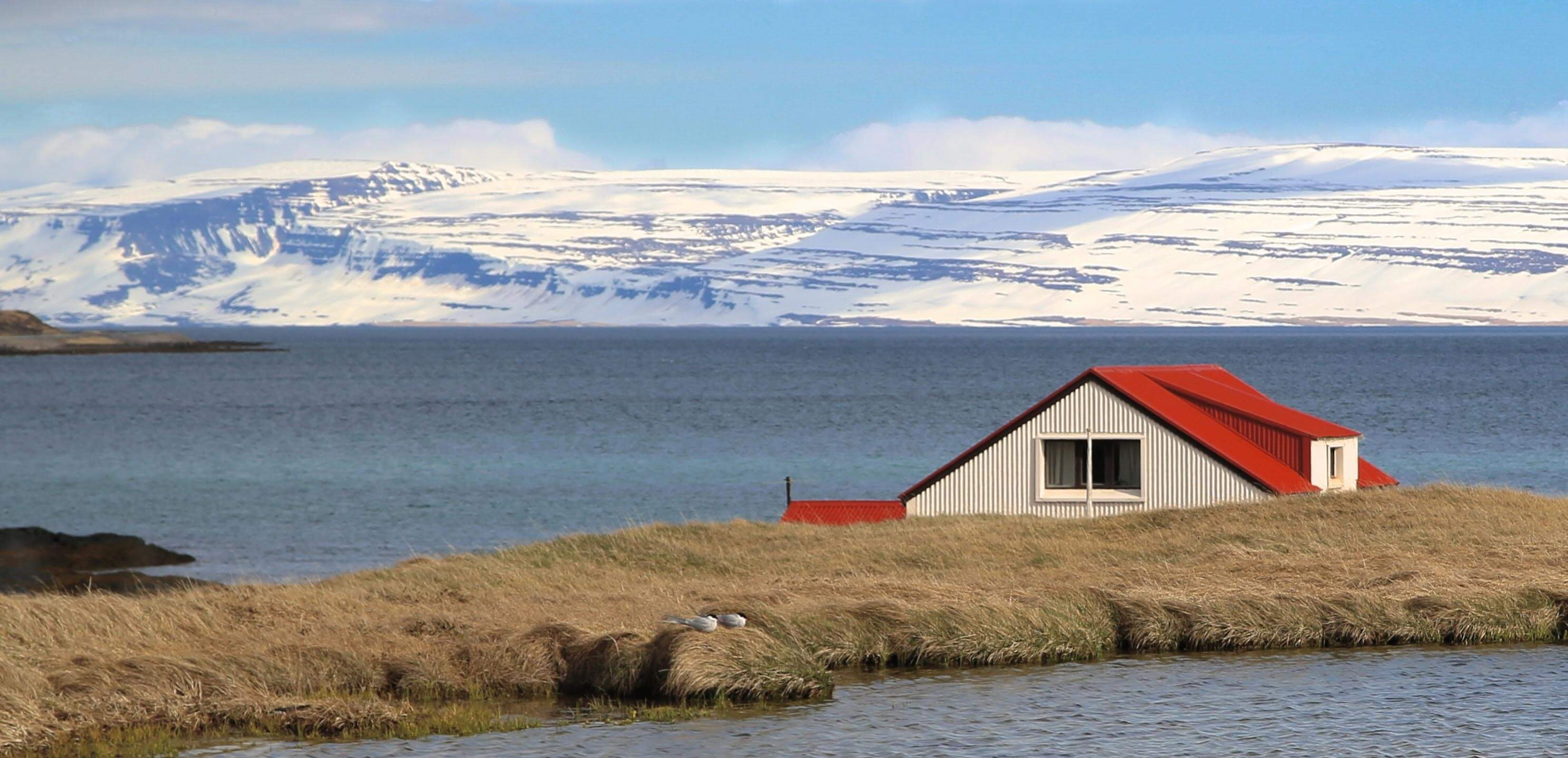 Our Icelandic Sea Salt comes from some of the cleanest water on earth.